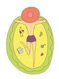 Ilustracja dziewczyny być ubranym kapeluszowy i kłaść na pływakowym łóżku Zdjęcia Royalty Free