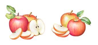 Ilustracja jabłka z zielonymi liśćmi Obrazy Stock