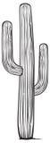 ilustracja kaktusowy wektor Royalty Ilustracja
