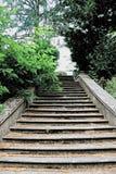 Ilustracja kamienny schody z spadać liśćmi royalty ilustracja