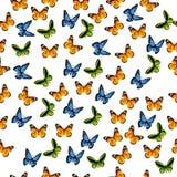 Ilustracja kolorowy motyl Obraz Stock