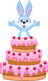 Królik wśrodku torta - urodzinowa karta Zdjęcie Stock