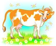 Ilustracja krowa Zdjęcia Royalty Free