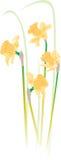 ilustracja kwiat Zdjęcie Royalty Free