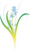 ilustracja kwiat Obraz Royalty Free
