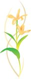 ilustracja kwiat Fotografia Stock