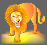 Ilustracja lew Obrazy Royalty Free