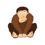 Ilustracja małpy wektorowe Fotografia Stock