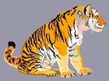 Ilustracja obsiadanie pasiasty tygrys Obrazy Royalty Free