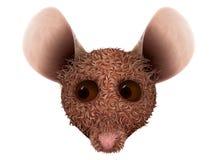 Ilustracja odizolowywająca na białym tle myszy głowa Obrazy Royalty Free