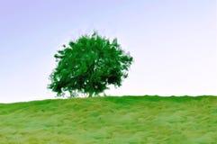 Ilustracja Odosobniony drzewo na górze wzgórza widzieć od niższego pozioma fotografia stock