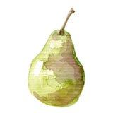 Ilustracja owocowa ręka rysujący bonkrety akwareli obraz Obrazy Royalty Free