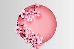 Ilustracja papierowa sztuka i rzemiosło okrążamy dekorującego wiosna sezonu czereśniowego okwitnięcia pojęcie, wiosna z Sakura ga royalty ilustracja