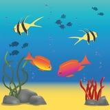 Ilustracja podwodny świat Fotografia Stock