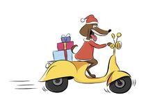 Ilustracja psia jazda moped z teraźniejszość, zwierzę Zdjęcie Royalty Free