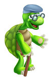 Starsza Tortoise kreskówka Fotografia Stock