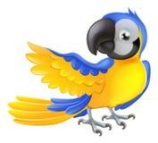 Śliczna błękitna i żółta papuga Fotografia Royalty Free