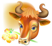 Ilustracja trzyma kwiatu krowa Obraz Stock