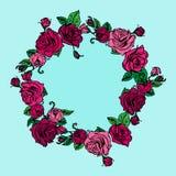 Ilustracja wianek róże Obraz Royalty Free