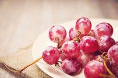ilustracja winogron malowaniu ręce wino Obrazy Royalty Free