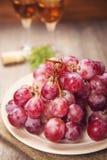 ilustracja winogron malowaniu ręce wino Obraz Stock