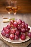 ilustracja winogron malowaniu ręce wino Fotografia Royalty Free