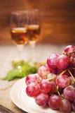 ilustracja winogron malowaniu ręce wino Zdjęcie Stock