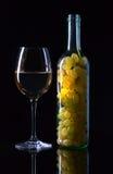 ilustracja winogron malowaniu ręce wino Zdjęcia Stock