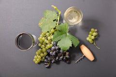 ilustracja winogron malowaniu ręce wino Fotografia Stock