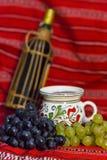 ilustracja winogron malowaniu ręce wino Zdjęcia Royalty Free