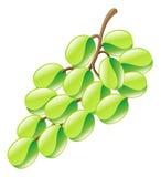 Ilustracja winogrono ikony owocowy clipart Fotografia Royalty Free