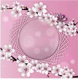Ilustracja wiosny ramy karta z kwiatami, odosobniona na białym tle Pożytecznie kartka z pozdrowieniami lub zaproszenie także zdjęcia stock