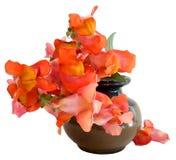Ilustracja wyżliny w ceramicznej wazie Fotografii manipulatio Fotografia Royalty Free