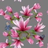 Ilustracja wzór z magnoliami na barwionym tle ilustracji