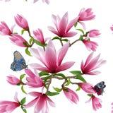 Ilustracja wzór z magnoliami na białym tle ilustracji
