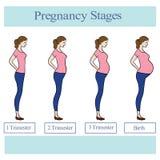 Ilustracja z kobieta w ciąży royalty ilustracja