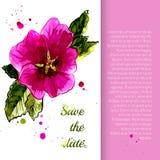 Ilustracja z kwiat różą ilustracja wektor
