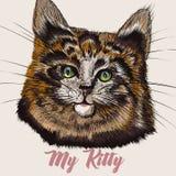 Ilustracja z portreta ślicznym kotem ilustracji