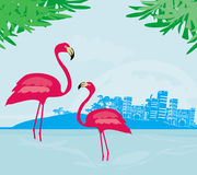 Ilustracja z zielonymi palmami i różowym flamingiem Zdjęcia Royalty Free