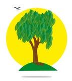 Ilustracja zielony drzewo z słońcem Obraz Royalty Free