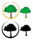 ilustracje drzewne Obrazy Stock