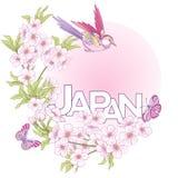 Ilustracje z Japońskimi okwitnięcie menchiami Sakura, ptaki i wo ilustracji