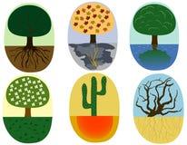 ilustracji roślin ilustracji