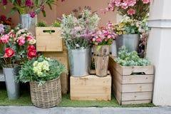 ilustracji sklepu smellcomp kwiat Zdjęcia Royalty Free