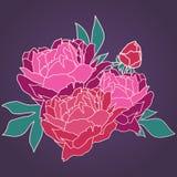 Ilustracyjna peonia Abstrakcjonistyczny kwiecisty tło Bukiet peonie Zdjęcie Royalty Free