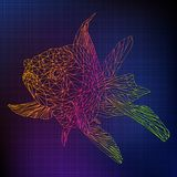 Ilustracyjna poligonalna kolor linia 3D złota ryba royalty ilustracja