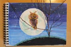 Ilustracyjna sowa przy nocą Zdjęcie Stock