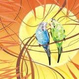 ilustracyjne papugi dekatyzują tropikalnego Obrazy Stock