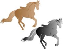 ilustracyjni galopujący konie Fotografia Stock