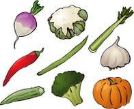 ilustracyjni warzywa Zdjęcia Royalty Free